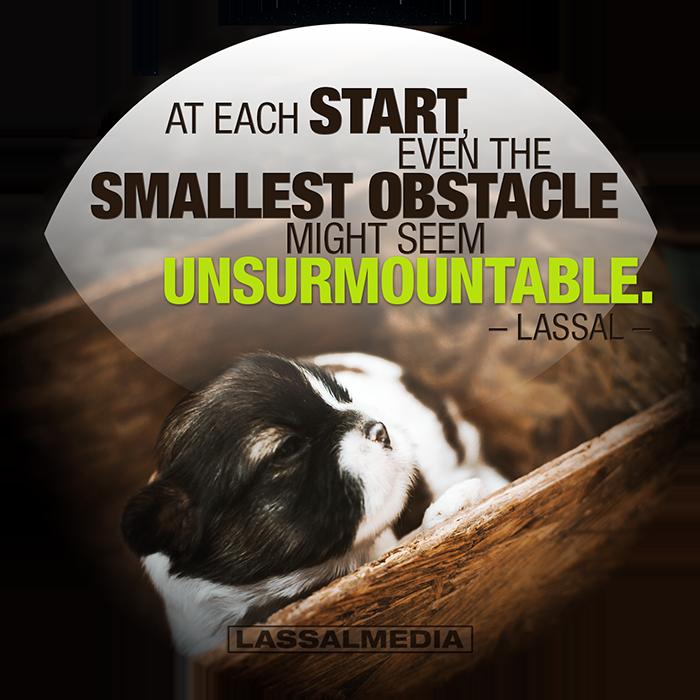 "LassalMedia: ""At each start even the smallest obstacle might seem unsurmountable."" –Lassal"